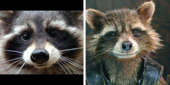 oreo-rocket-raccoon-guardians-of-the-galaxy